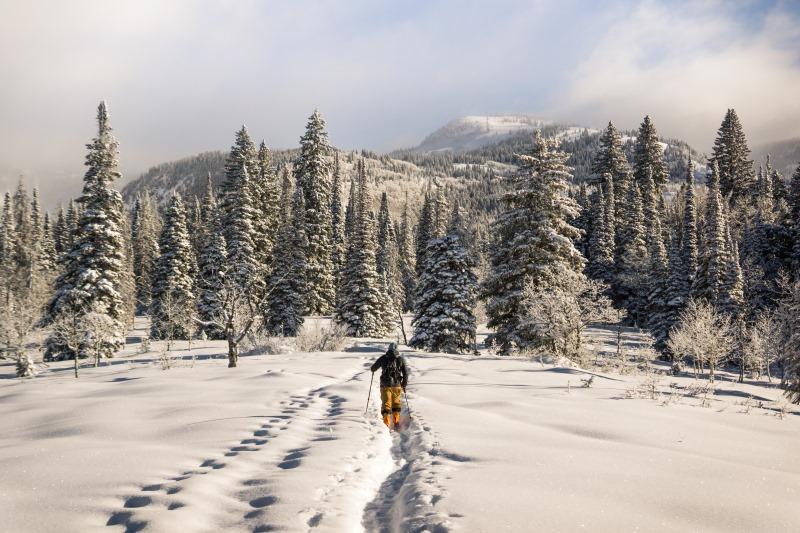 lectii ski primavara